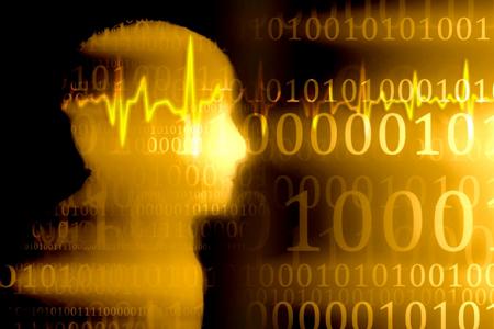 リセットした脳に情報を効率よくインプット